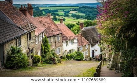 Ouro colina íngreme rua Foto stock © flotsom
