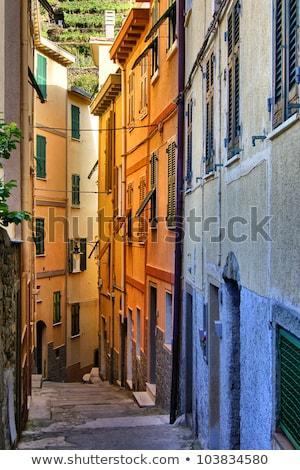 narrow street in the village of manarola cinque terre italy stock photo © anshar