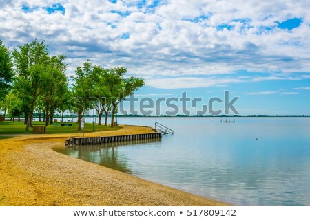 Reed Belt Landscape in National Park stock photo © Bertl123
