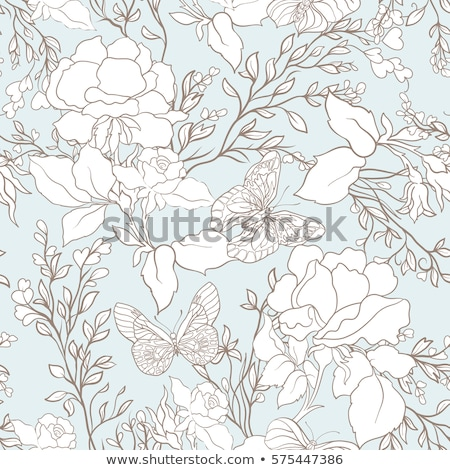 romantic doodle background with rose and butterfly stock photo © elmiko