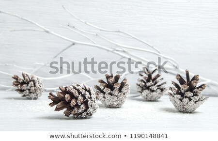 pinecone on white snow stock photo © rmarinello