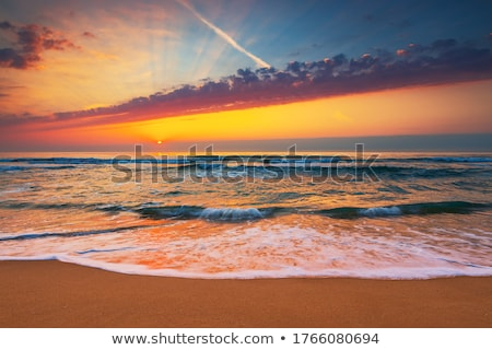 florida beach scene stock photo © alex_grichenko