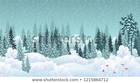 Fenyőfa tél erdő örökzöld lucfenyő természet Stock fotó © Anterovium