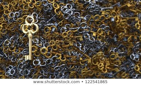Growth - Golden Key Stok fotoğraf © denisgo