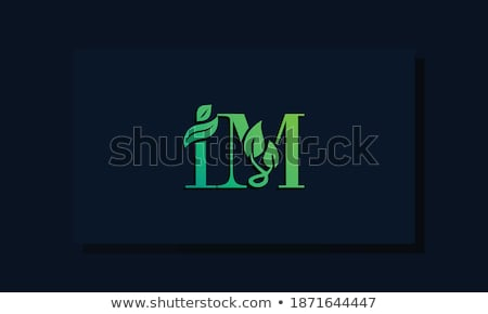 im two stock photo © soupstock