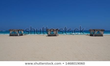 Lata miesiąc miodowy Egipt romantyczny pustyni podróży Zdjęcia stock © lordalea