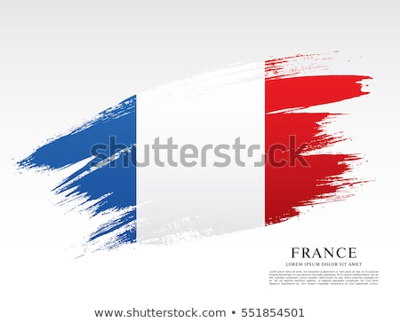 Grunge flag of France Stock photo © stevanovicigor