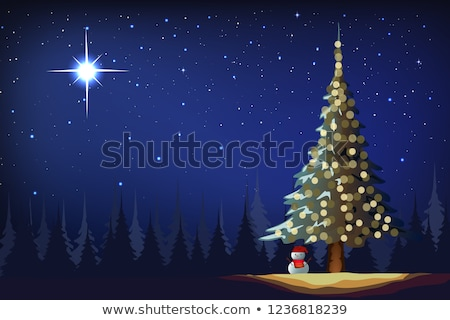 Peaceful starry night with Christmas tree Stock photo © wenani