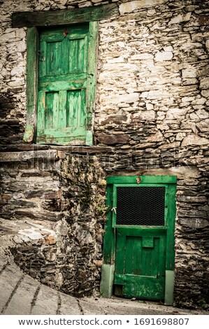 verdubbelen · groene · deuren · groot · geschilderd · hout - stockfoto © kimmit
