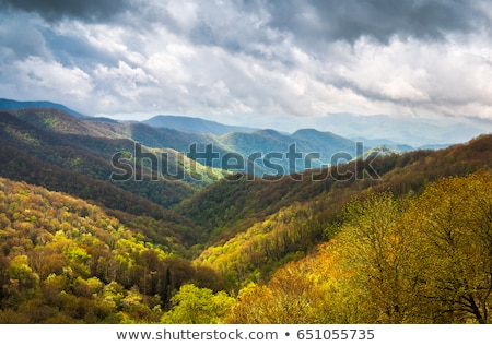 Great Smoky Mountains National Park near Gatlinburg, Tennessee. Stock photo © alex_grichenko