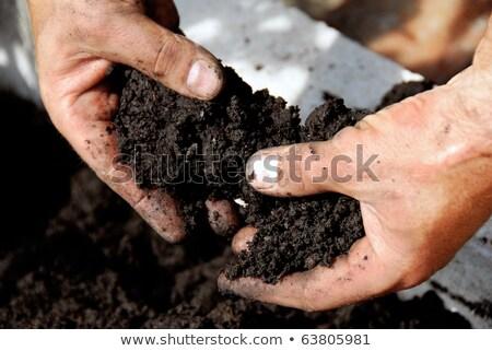ストックフォト: クローズアップ · 手 · 汚れ · 土壌 · 汚い · ワーカー