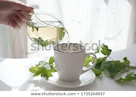 Stock photo: Blackcurrant tea