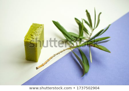 White soap with green leaf Stock photo © Anettphoto