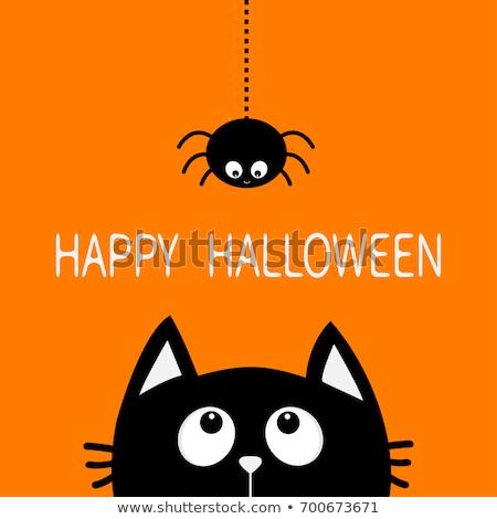Halloween Card with Spooky Boo. Stock photo © Voysla