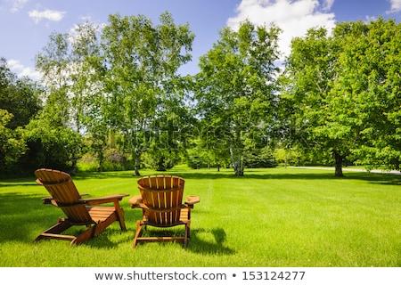 Dos sillas exuberante verde césped Foto stock © alex_grichenko