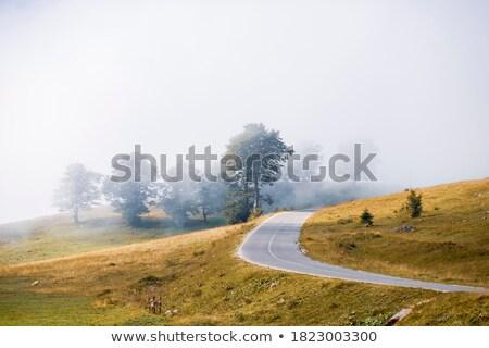 Berg najaar landschap bergen terrein Stockfoto © hraska