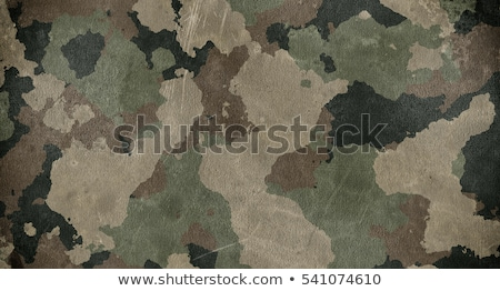 military camouflage background stock photo © frameangel
