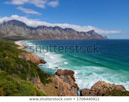 út · hamis · tengerpart · előtér · nyugat · felső - stock fotó © JFJacobsz
