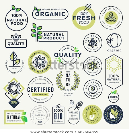 Certified Green Vector Icon Design Stock photo © rizwanali3d