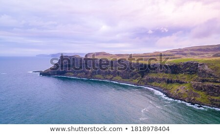 Talisker Bay on the Isle of Skye stock photo © elxeneize