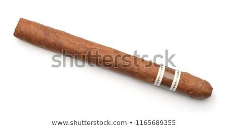 Een cubaans sigaar handgemaakt vers Stockfoto © fanfo