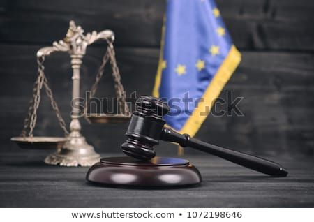a gavel and a law book   european union stock photo © zerbor