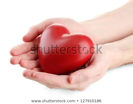 Man present red heart stock photo © boroda