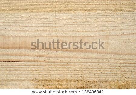 дерево · древесины · аннотация · природы · оранжевый - Сток-фото © valeriy