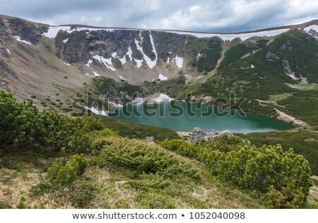 idyllic view with snow on balea lake shore in fagaras mountains stock photo © pixachi