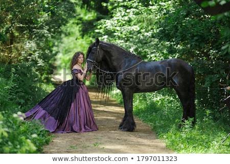 Paars korset mooie brunette vrouw sexy Stockfoto © disorderly