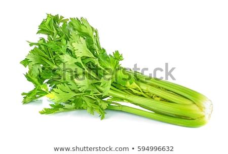 Zöld káposzta zeller izolált fehér étel Stock fotó © tetkoren