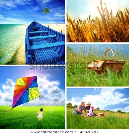 Zdjęcia stock: Dziecko · trawy · Kania · kolaż · papieru · sportowe