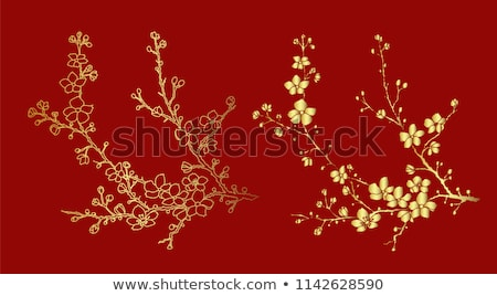 flowering apricot stock photo © dedmorozz
