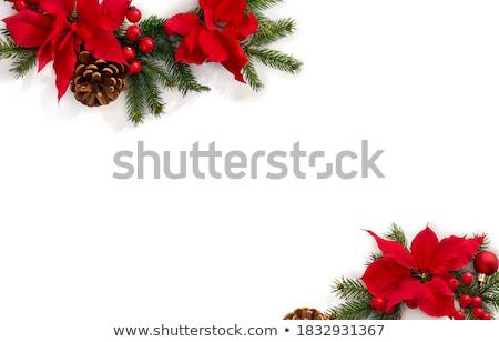 dekoráció · almák · kettő · piros · karácsony · csillag - stock fotó © funix