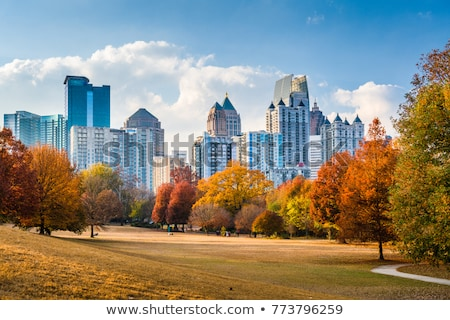 Piedmont Park in Atlanta, GA Stock photo © phakimata