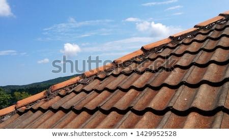 old tiles roof stock photo © smuki