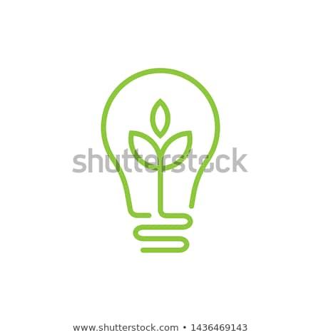 Eco bombilla creativa naturaleza muerta energía ahorro Foto stock © Fisher