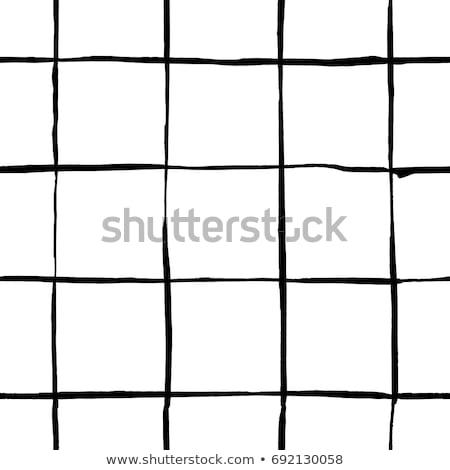 ストックフォト: ベクトル · シームレス · 手描き · グリッド · パターン · 黒白