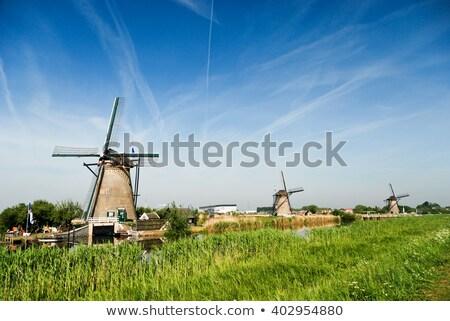 windmill in Kinderdijk Holland Stock photo © compuinfoto