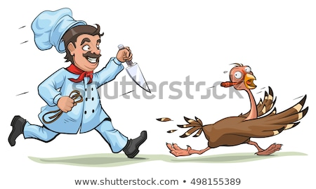 Cook with knife pursues frightened turkey. Fun concept for Thanksgiving Day Stock photo © orensila