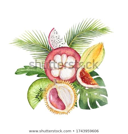 owoców · chińczyk · kamień · żywności · medycznych - zdjęcia stock © zhekos