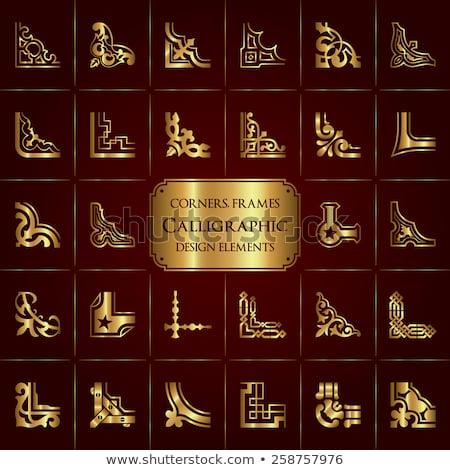 gouden · decoratief · hoeken · ontwerp · vector - stockfoto © blue-pen