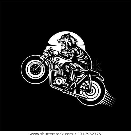 Człowiek jazda konna motocykla noc jazdy miasta Zdjęcia stock © RAStudio