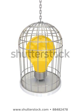 lightbulb cage Stock photo © psychoshadow