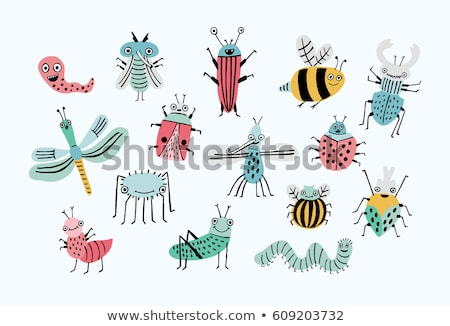 Vector flat style set of various colorful bugs.  Stock photo © curiosity