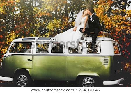Foto d'archivio: Felice · sposa · lo · sposo · posa · autunno · foresta