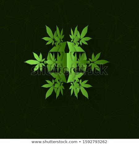 Natale cannabis marijuana luce bianco Foto d'archivio © romvo