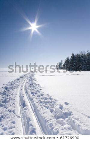 Neve caminho esquiar seguir superfície textura Foto stock © stevanovicigor