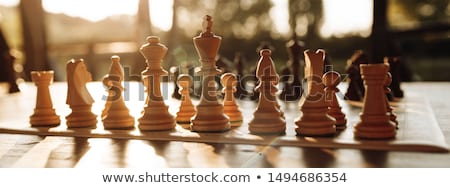 Chessboard with figures Stock photo © tracer