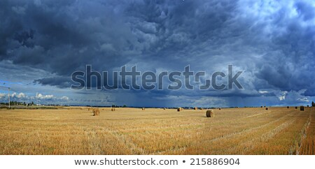 autumn mountain disturbed farm view Stock photo © wildman